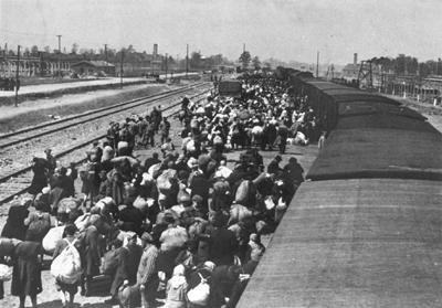 http://www.holocaustsurvivors.org/photos/auschwitz-album_plate15+large.jpg